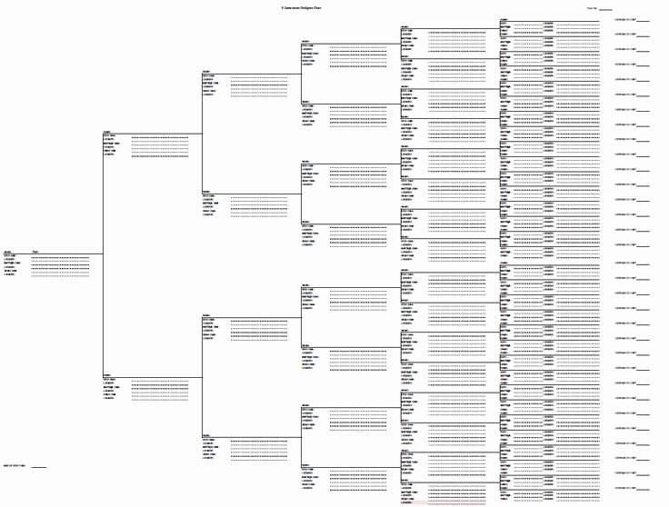 Fillable Family Tree Template Awesome Best 25 Genealogy forms Ideas On Pinterest