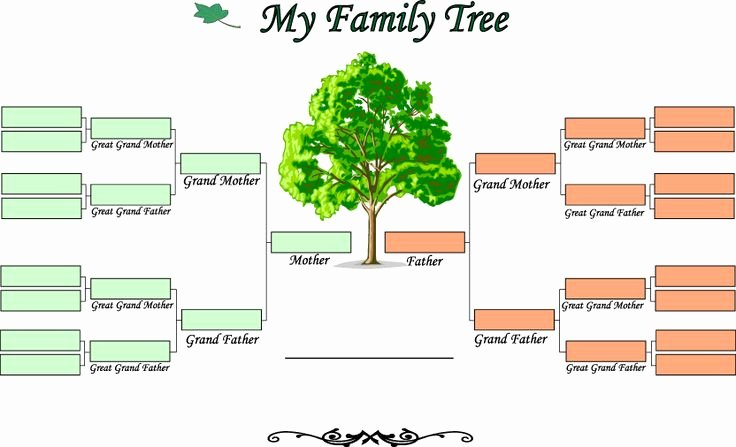 Fillable Family Tree Template Beautiful Printable Blank Family Tree