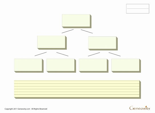 Fillable Family Tree Template Best Of Blank Family Tree form Fillable Pdf form