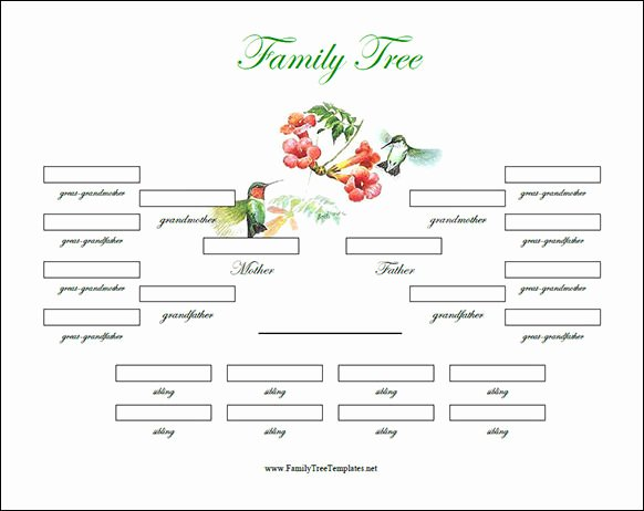 Fillable Family Tree Template Best Of Free 56 Family Tree Templates In Word Apple