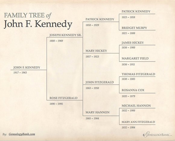 Fillable Family Tree Template Elegant Free 56 Family Tree Templates In Word Apple