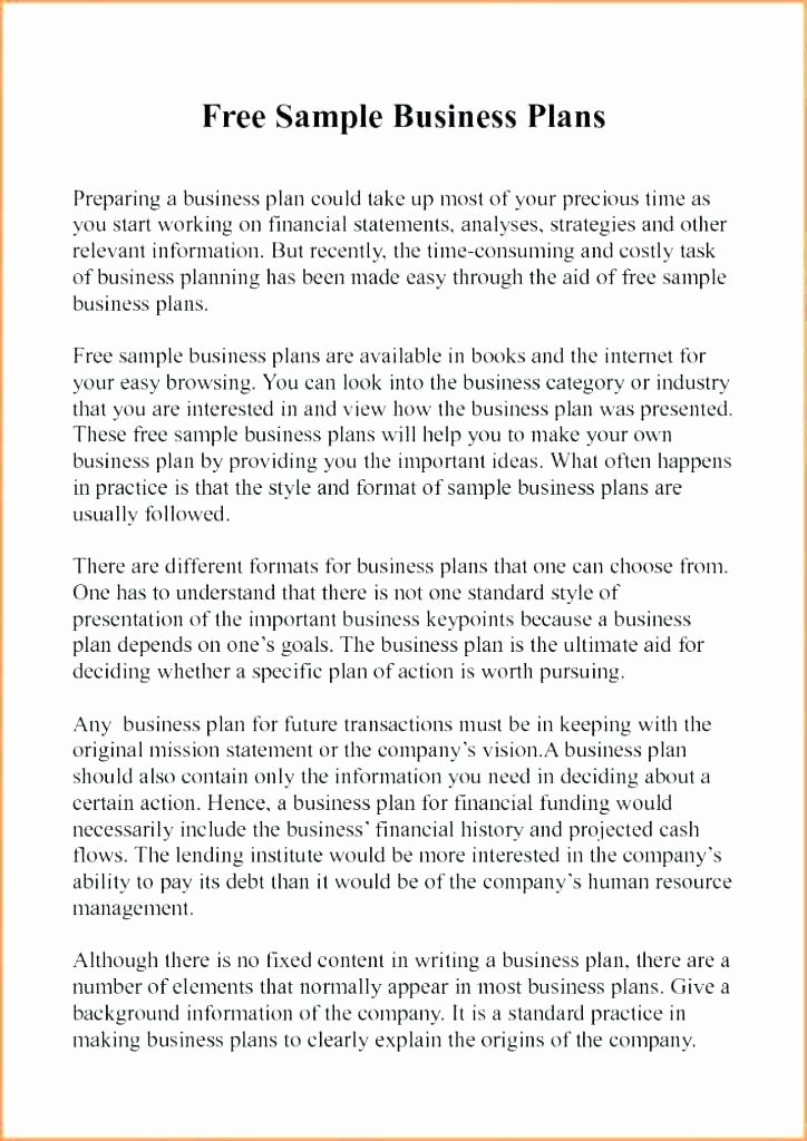 Film Business Plan Template Luxury Business Plan Template – Sample Business Plan 9