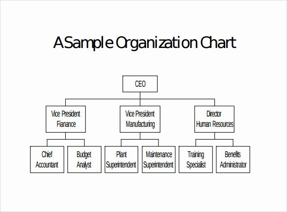 Fire Department organizational Chart Template Fresh 9 Blank organizational Charts