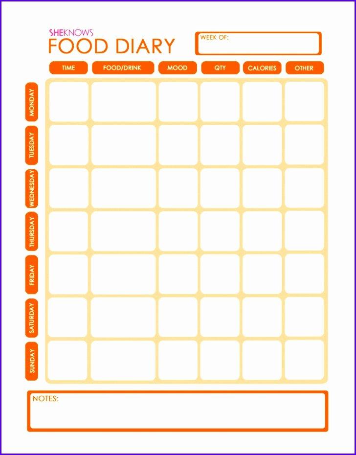 Food Diary Template Excel Elegant 14 Food Journal Template Excel Exceltemplates