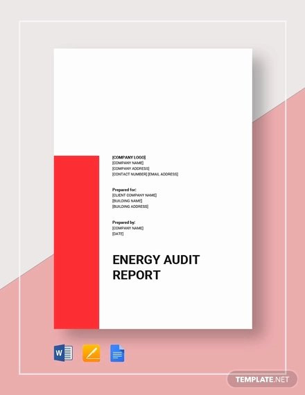 Forensic Report Template Microsoft Word Best Of Free 16 Audit Report Examples In Pdf Docs