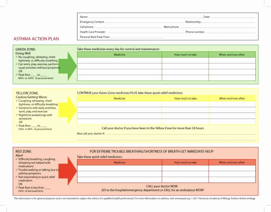 Free Action Plan Template Inspirational 11 Free Action Plan Templates Word Excel formats