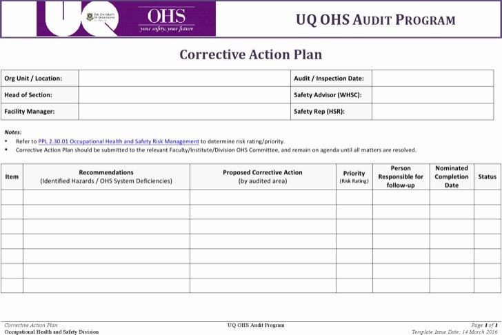 Free Corrective Action Plan Template Inspirational 9 Action Plan Templates Free Download