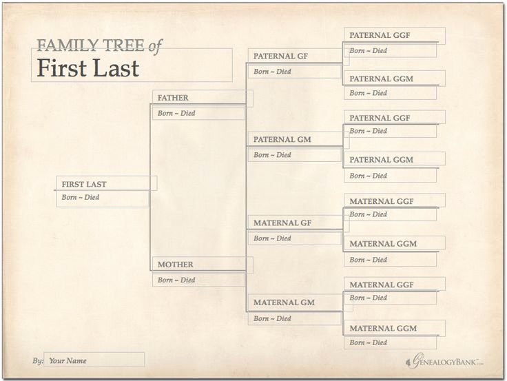 Free Editable Family Tree Template Best Of 228 Best Images About Genealogy Charts forms and