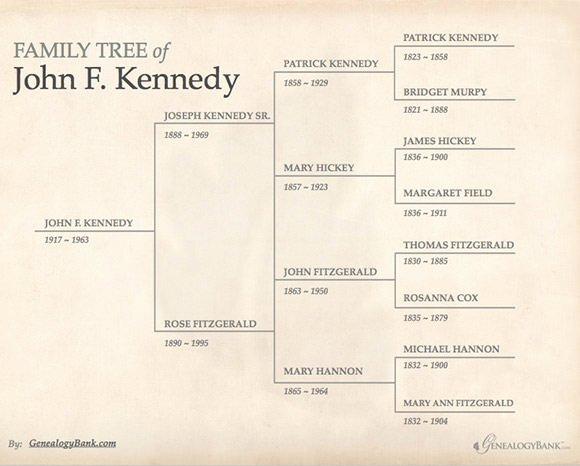 Free Editable Family Tree Templates Beautiful Free 56 Family Tree Templates In Word Apple
