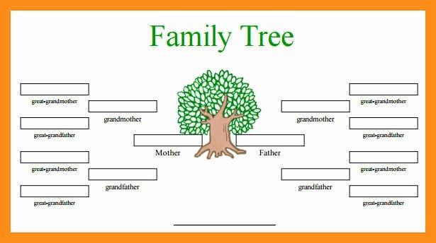 Free Editable Family Tree Templates Best Of 12 13 Family Tree Spreadsheet Template