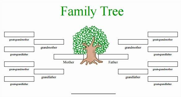 Free Editable Family Tree Templates Elegant Blank Family Tree Template 32 Free Word Pdf Documents