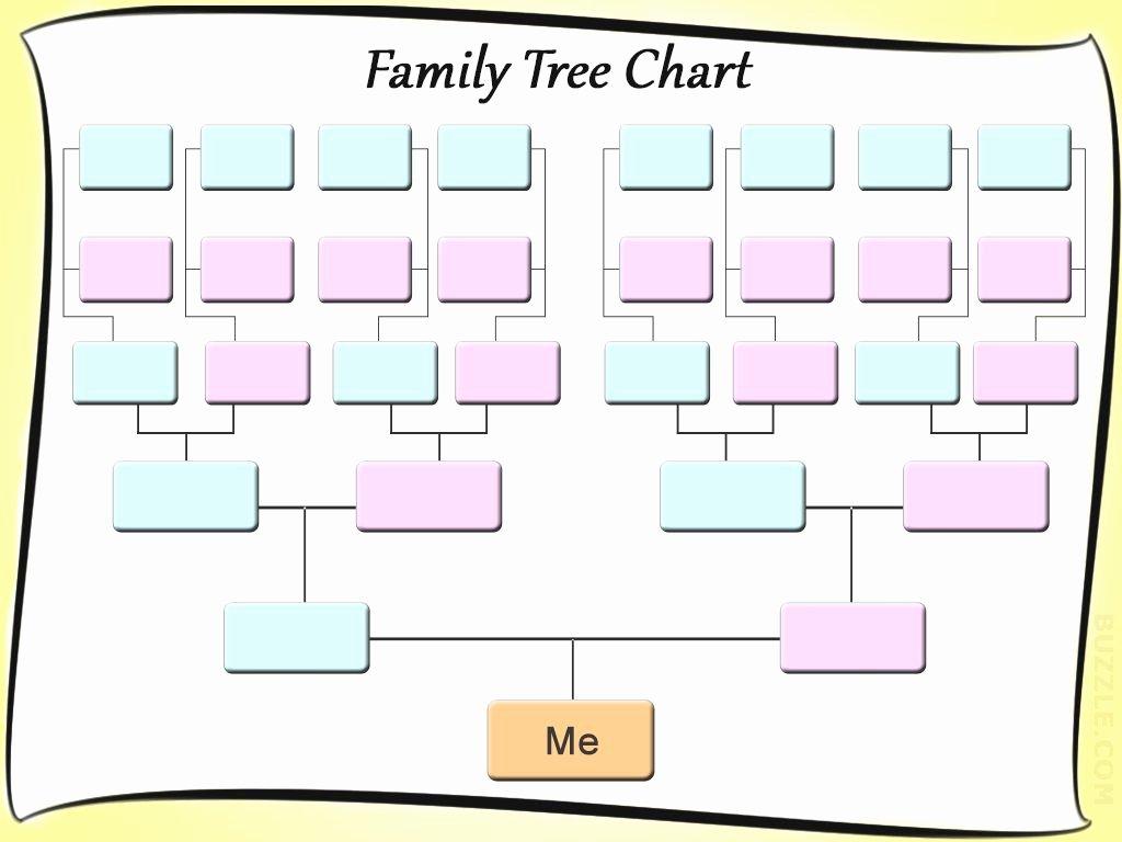 Free Editable Family Tree Templates Elegant Free Editable Family Tree Template Daily Roabox