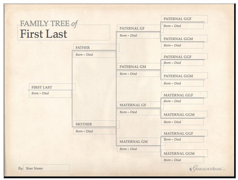 Free Editable Family Tree Templates Inspirational Family Tree Template & How to Get Started