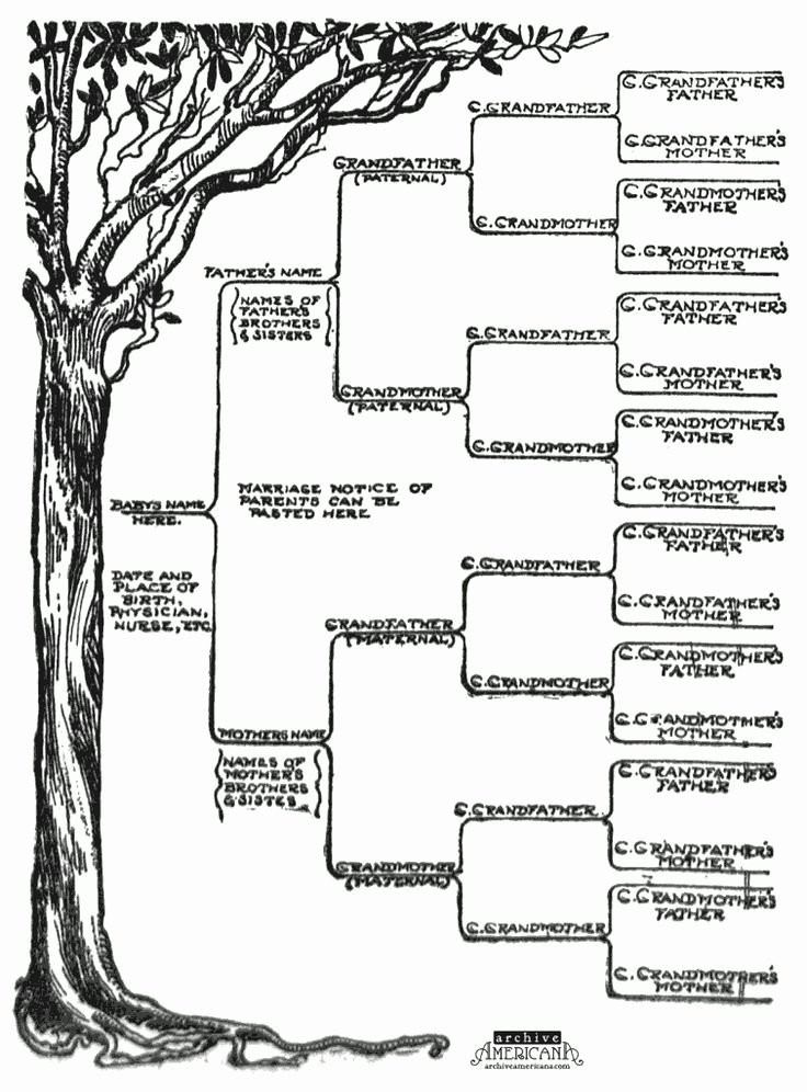 Free Family Tree Template Word Unique Start A Genealogical Record for Your Family 1905