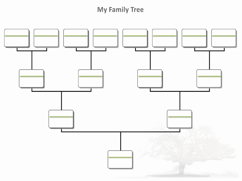 Free Fillable Family Tree Template Fresh Blank Family Tree Template