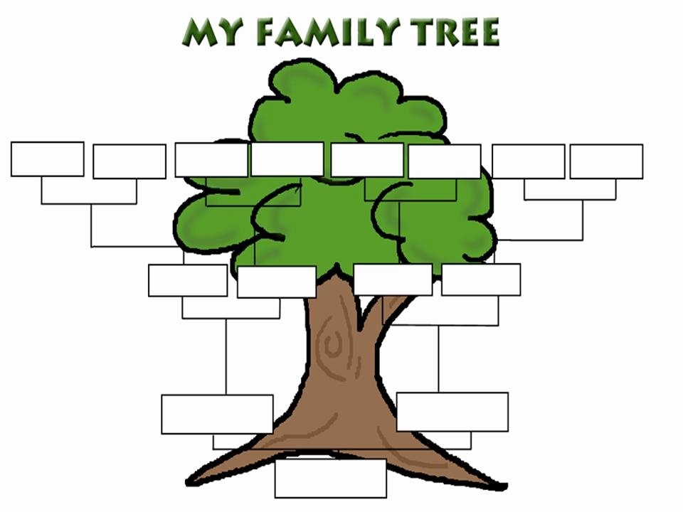 Free Fillable Family Tree Template Fresh Printable Family Tree Clipart Best