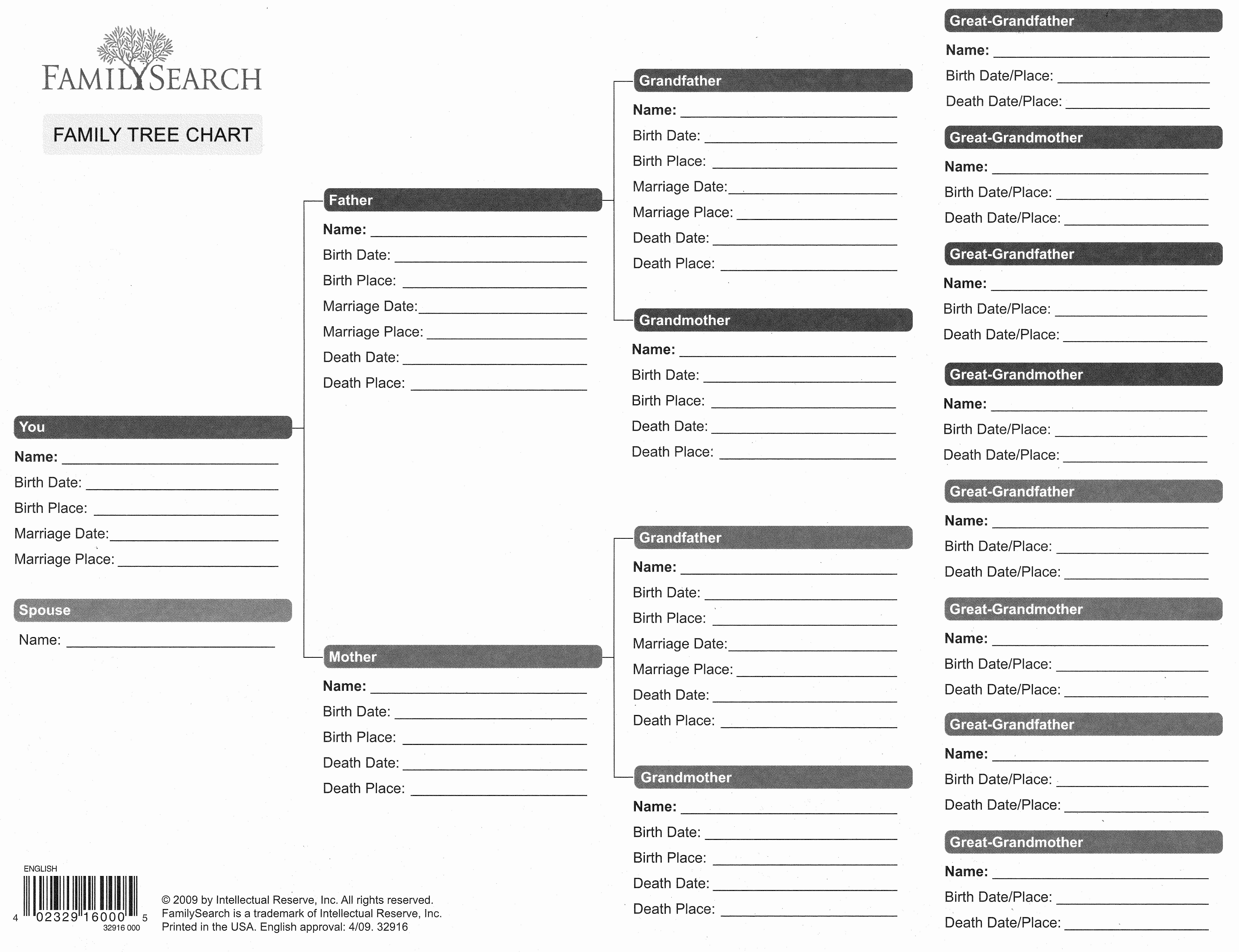 Free Fillable Family Tree Template Lovely Blank Family Tree form