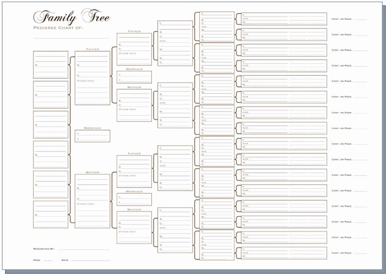 Free Fillable Family Tree Template Luxury A3 Six Generation Pedigree Chart