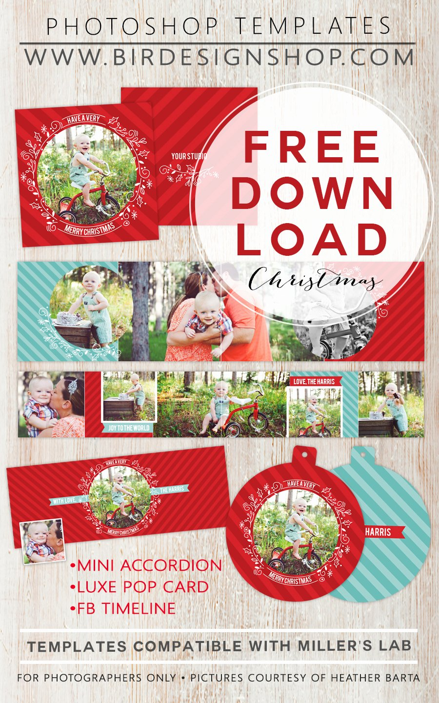 Free Holiday Newsletter Templates Awesome 50 Free Holiday Card Templates Moritz Fine Designs