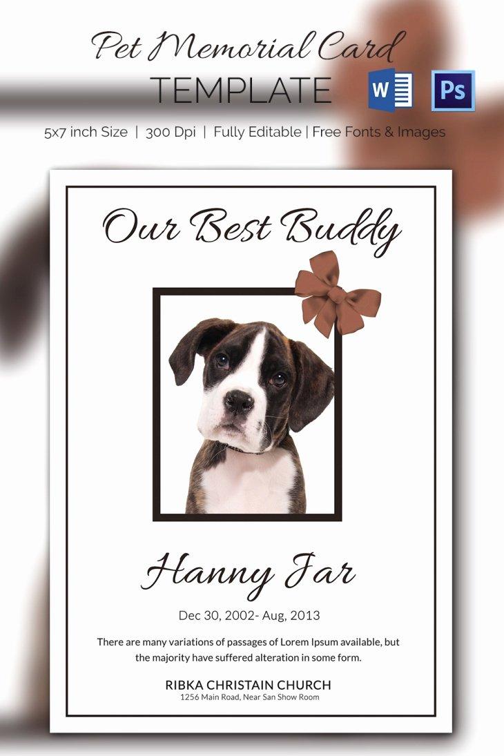 Free Memorial Card Template Inspirational 5 Pet Memorial Card Template Word Psd Pages