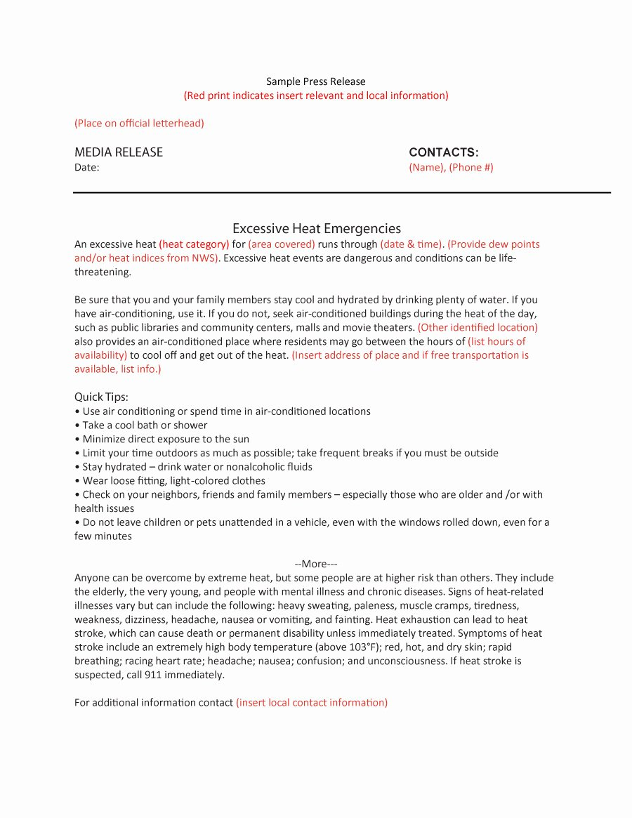 Free Press Release Template Fresh 47 Free Press Release format Templates Examples & Samples
