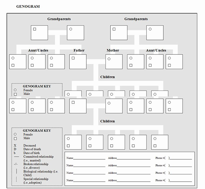 Genogram Template for Mac Luxury 36 Genogram Templates Pdf Word Apple Pages Google