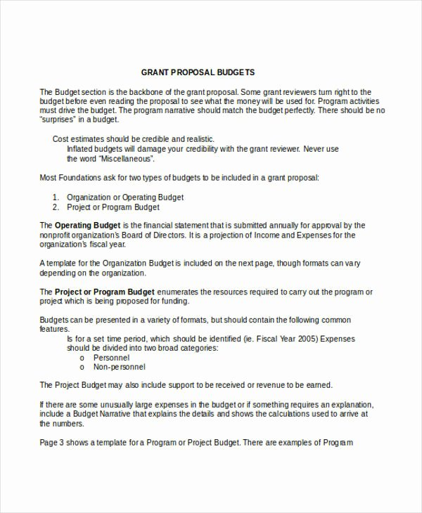 Grant Proposal Budget Template Awesome 45 Proposal Templates In Doc