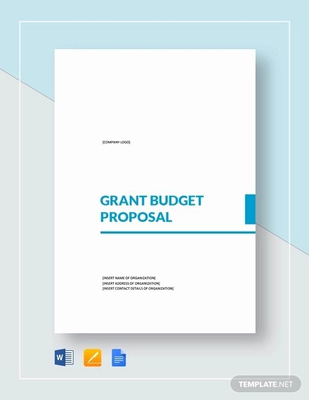 Grant Proposal Budget Template Elegant 11 Grant Proposal Examples & Samples Pdf Word Pages