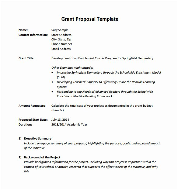 Grant Proposal Template Word Fresh 11 Sample Grant Proposals Word Pdf Pages