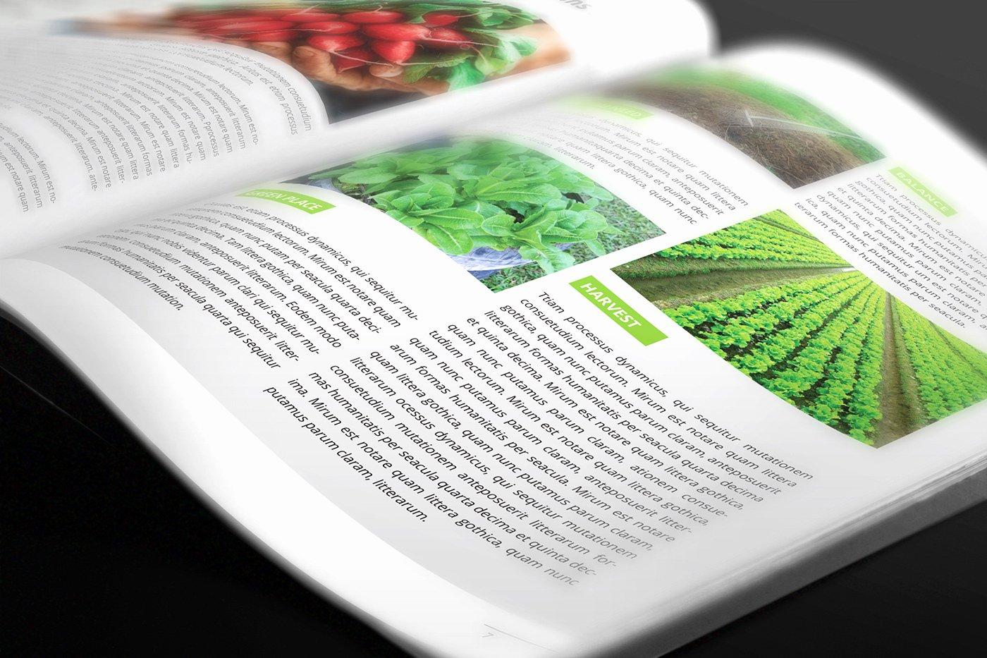 In Design Calendar Template Inspirational Free Calendar 2019 Indesign Template On Behance
