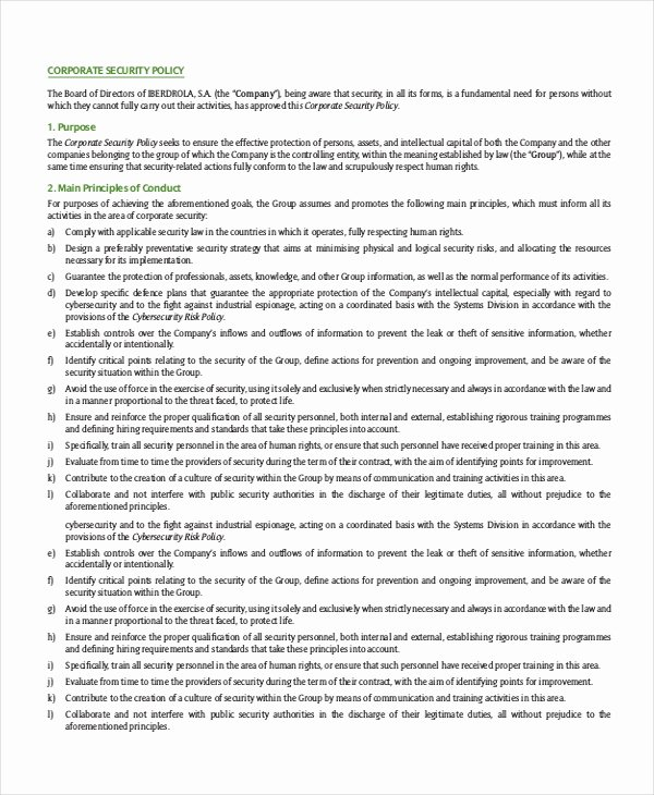 Information Security Policy Template Fresh Security Policy Template 7 Free Word Pdf Document