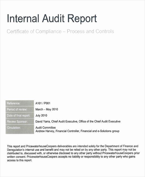 Internal Audit Report Templates Elegant 41 Report format Samples