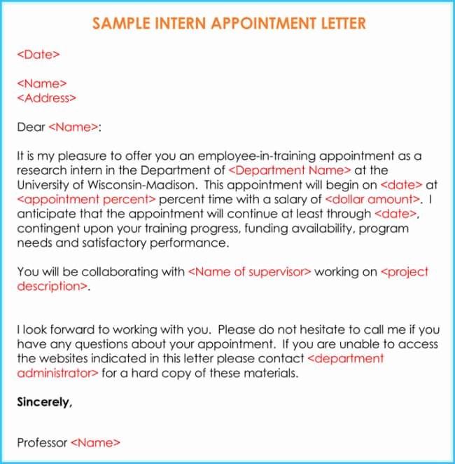 Internship Offer Letter Template Unique Internship Fer & Appointment Letter Template 7