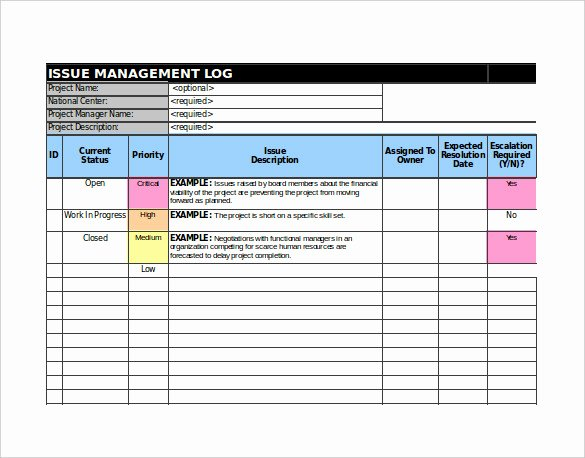 Issue Tracking Template Excel Awesome 9 issue Tracking Templates Free Sample Example format