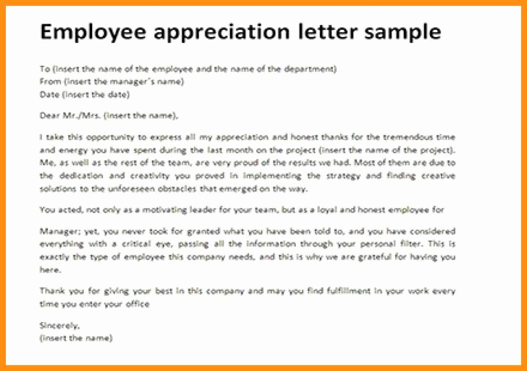 Letter Of Appreciation Template Fresh 10 Letter Of Appreciation for Employee