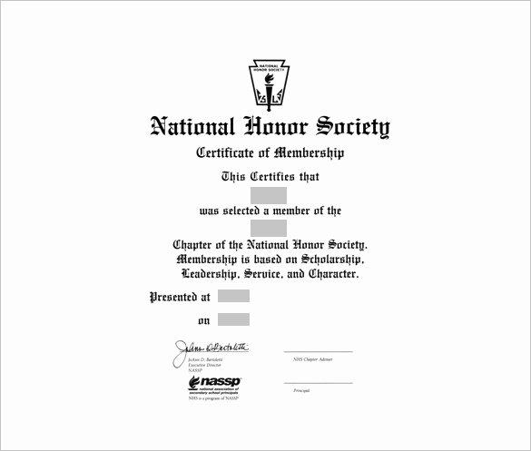 Llc Membership Certificate Template Best Of 23 Membership Certificate Templates Word Psd In