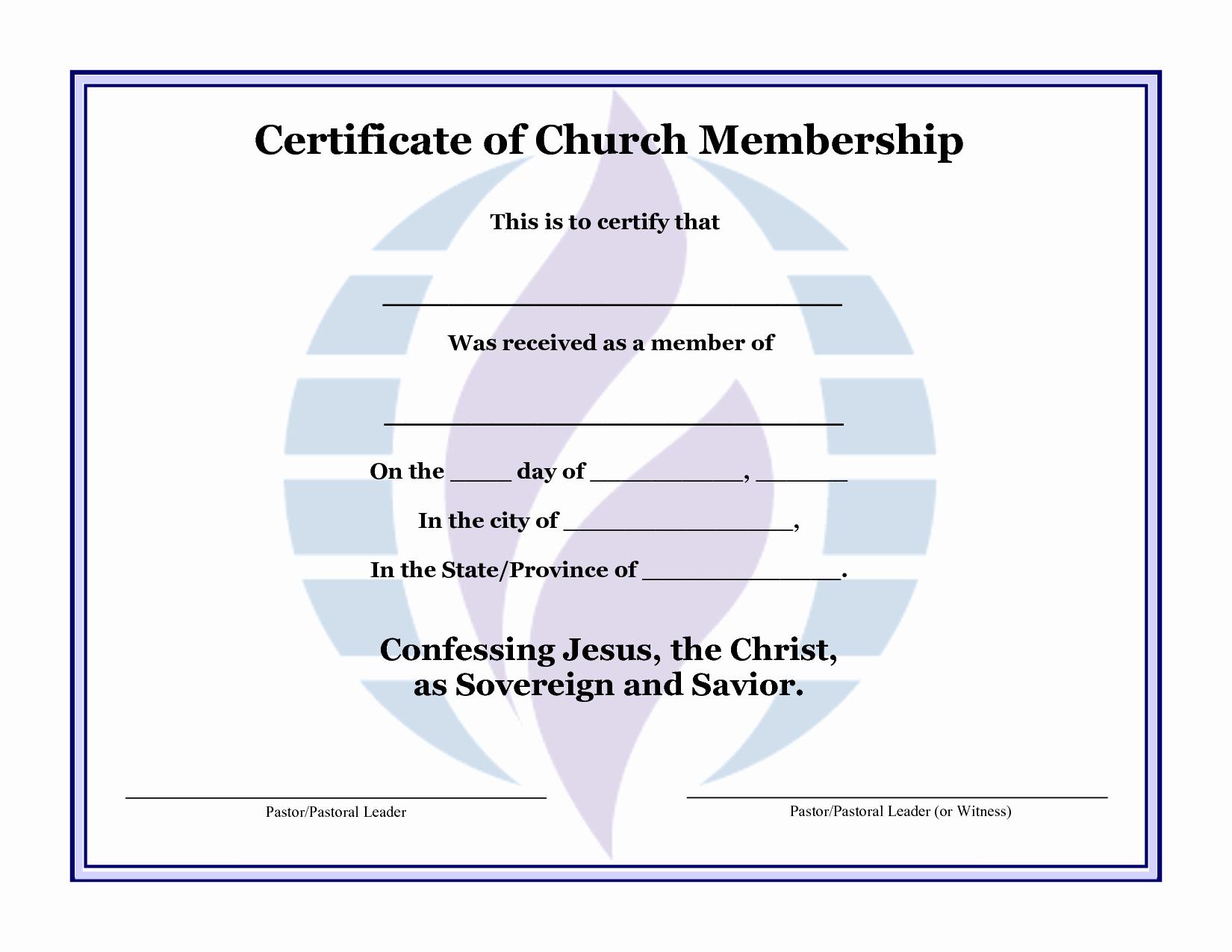 Llc Membership Certificate Template Lovely Best S Of format Certificate Membership Sample