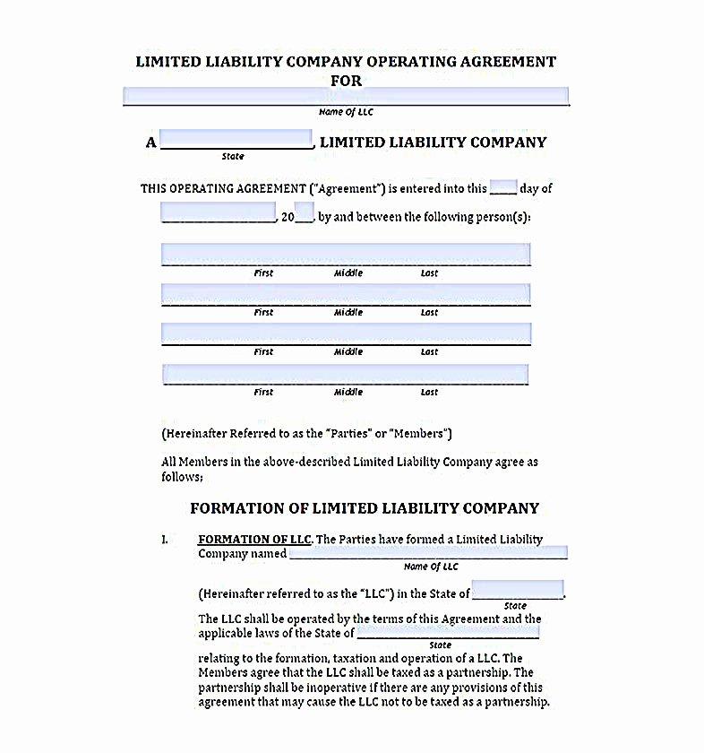 Llc Operating Agreement Template Pdf Fresh 23 Llc Operating Agreement Template