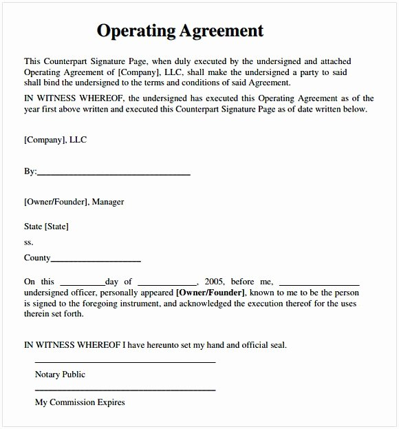 Llc Operating Agreement Template Pdf Inspirational Operating Agreement Pdf