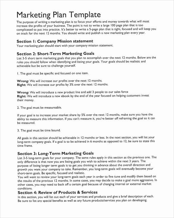 Marketing Action Plan Template Fresh Sample Marketing Action Plan Template 14 Documents In Pdf
