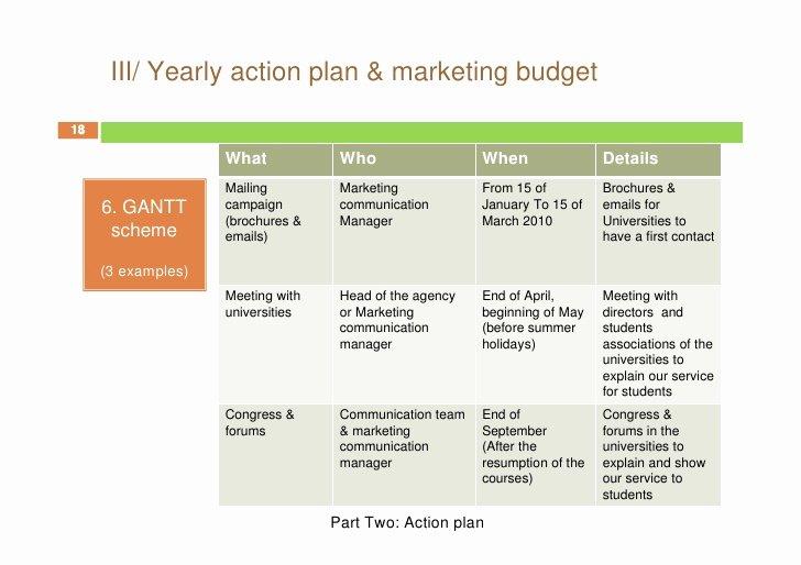 Marketing Action Plan Template Lovely Free Marketing Plan Sample Of Mckinney Munication
