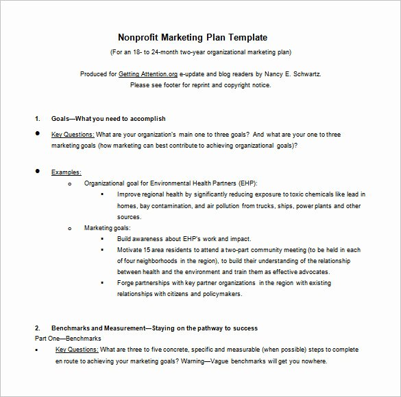Marketing Action Plan Template Luxury 9 Marketing Action Plan Templates Doc Pdf