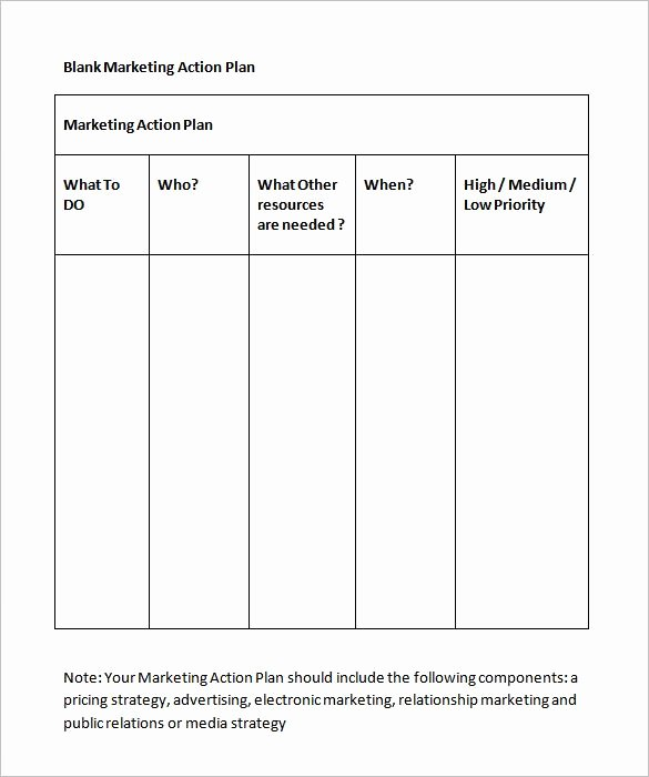 Marketing Action Plan Template New Marketing Action Plan Template 12 Free Word Excel Pdf