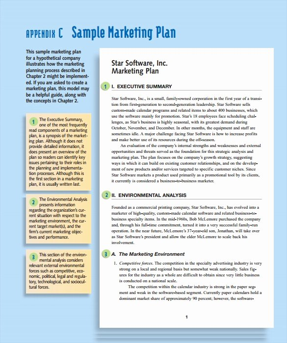 Marketing Action Plan Template New Sample Marketing Action Plan Template 14 Documents In Pdf