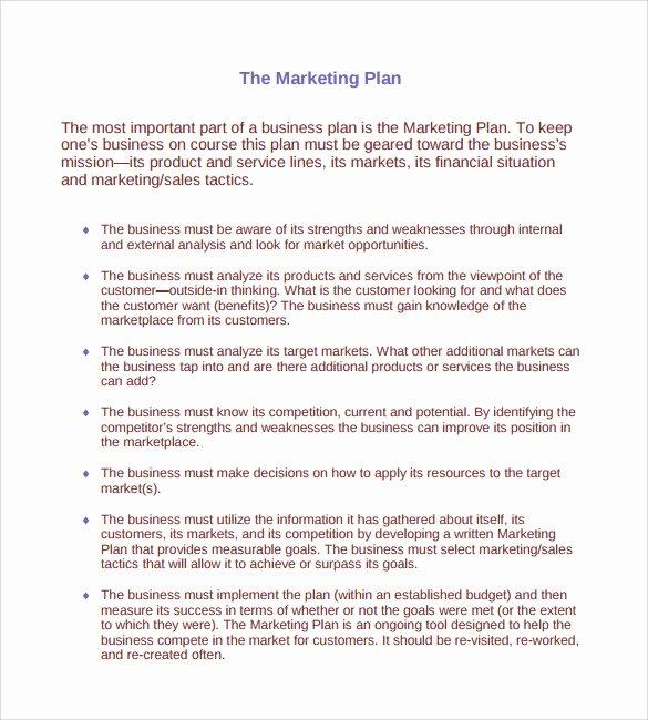 Marketing Action Plan Template Unique Sample Marketing Action Plan Template 14 Documents In Pdf