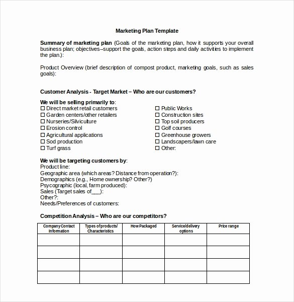 Marketing Action Plan Templates Awesome 31 Microsoft Word Marketing Plan Templates