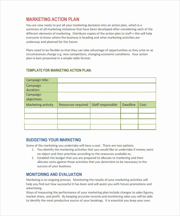 Marketing Action Plan Templates Best Of Sample Marketing Action Plan Template 14 Documents In Pdf