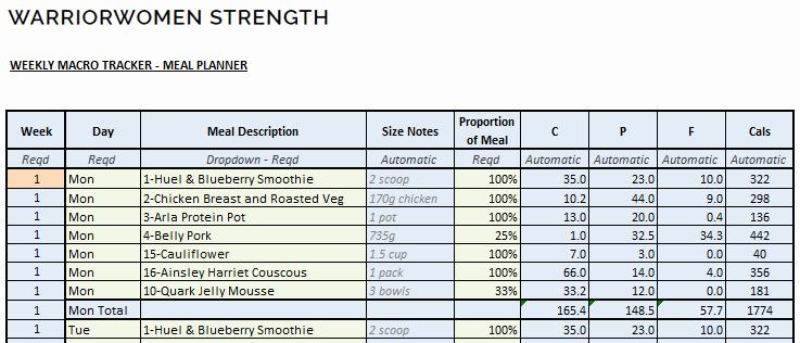 Meal Plan Template Excel Elegant Macro Meal Planner Spreadsheet Warriorwomen Strength