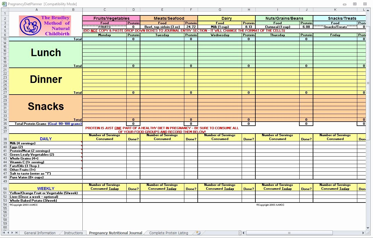 Meal Plan Template Excel Lovely Pregnancy Diet Spreadsheet
