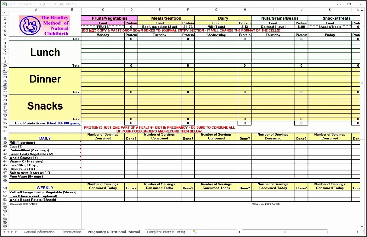 Meal Plan Template Excel Unique 10 Monthly Meal Planner In Excel Sampletemplatess